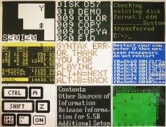 Syntax error / 200x150cm / acrylique sur papier - acrylic on paper