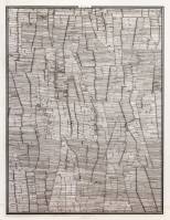 Polder / 2014 / 38cmx50cm / dessin à l'encre sur polyester – ink drawing on polyester